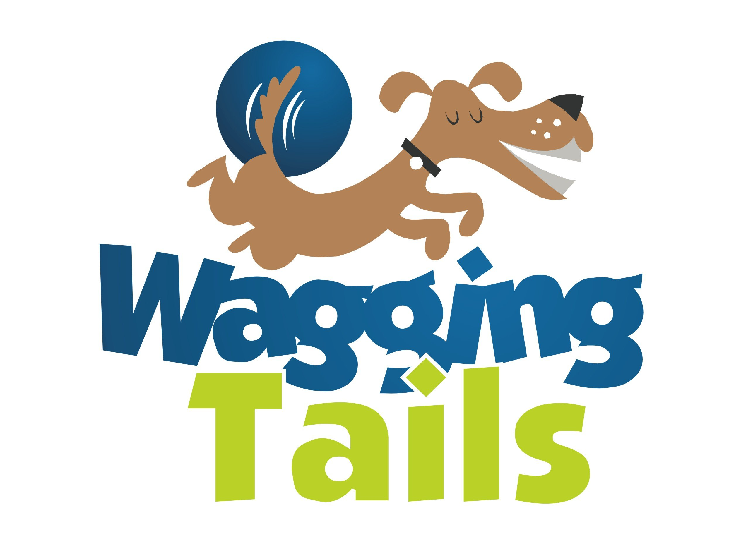 Wagging Tails Dog Walking Pet Sitting Services