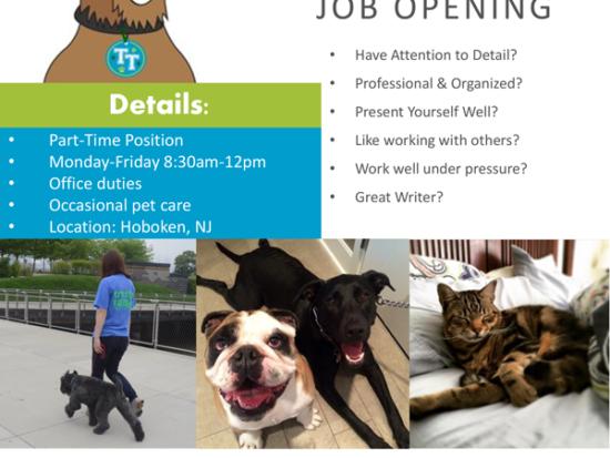 Pet Care Jobs Archives - Trusty Tails Pet Care
