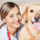 Best Vets in Essex County Reviews