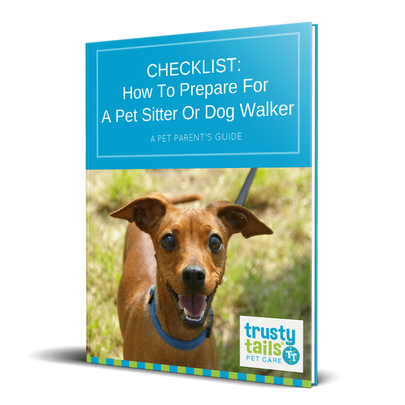 How to prepare for a pet sitter or dog walker