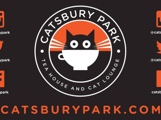 Catsbury Park – NJ's First Cat Cafe