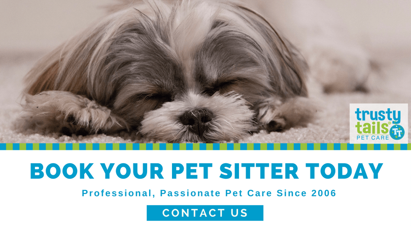 book-your-pet-sitter-today