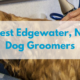 Best-edgewater-nj-dog-groomers.png