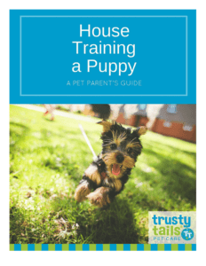 House-Training-A-Puppy_Cover-232x300.png
