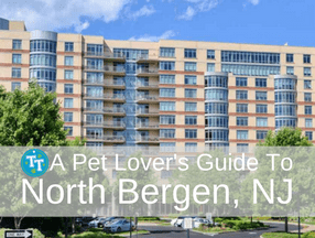 Pet Lover's Guide to North Bergen