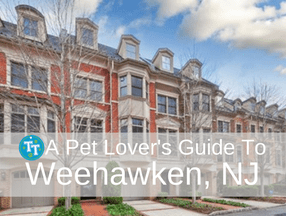 Pet Lover's Guide to Weehawken