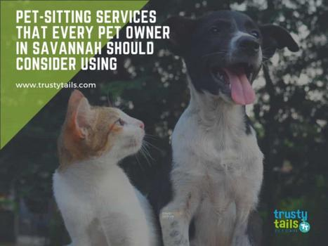 Pet-Sitting Services That Every Pet Owner In Savannah Should Consider Using copy