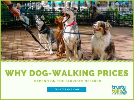 Why Dog-Walking Prices Depend On The Services Offered