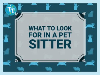What to Look for Pet Sitter feature
