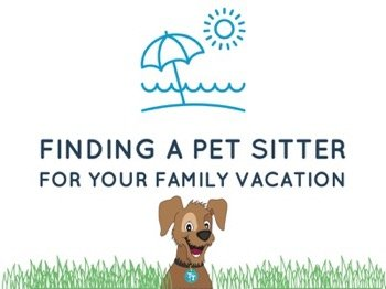 Finding Pet Sitter Your Family Vacation