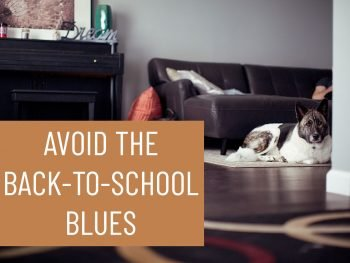 Avoid the Back-To-School Blues