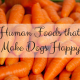 human foods that make dogs happy
