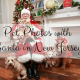 pet photos with Santa in New Jersey