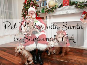 pet photos with Santa in georgia