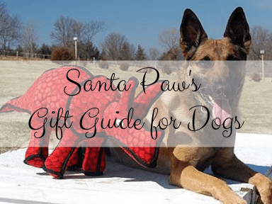 santa paw's gift guide